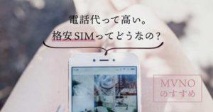 格安SIMについて